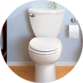 Toilet Projects